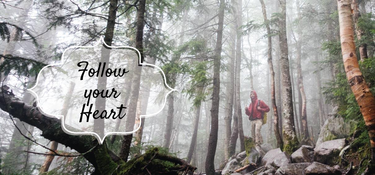 Fresh Spirit Works Linda Herron, Reiki, Reiki Classes, Young Living Essential Oils, Follow your heart